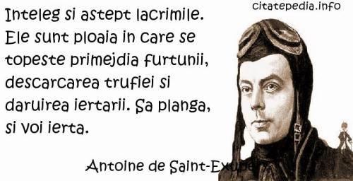 antoine_de_saint_exupery_lacrimi_78